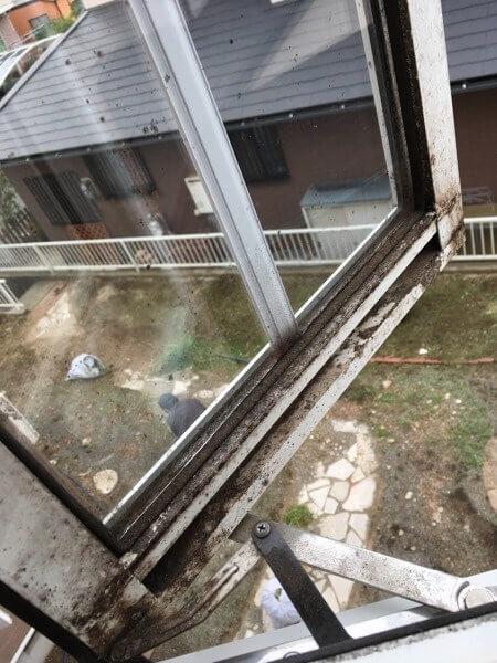 引っ越し ハウスクリーニングの窓掃除