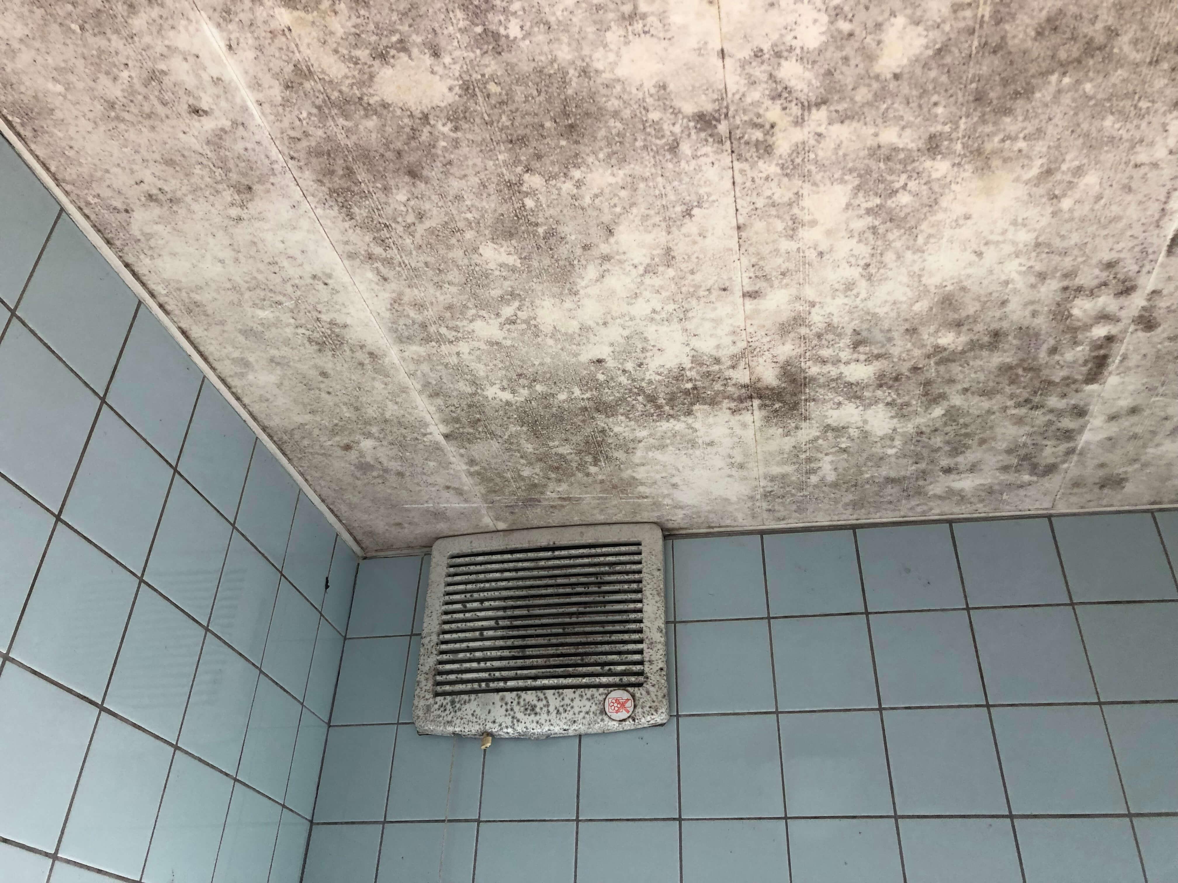 お風呂の天井のカビ